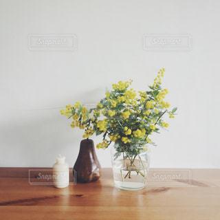 花の写真・画像素材[347754]