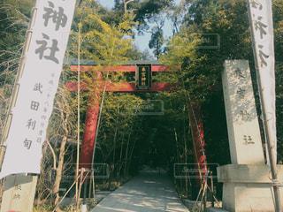 神社の写真・画像素材[621999]