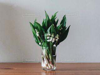 テーブルの上に座っての花で一杯の花瓶の写真・画像素材[2079890]