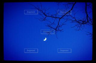 夜の写真・画像素材[624632]