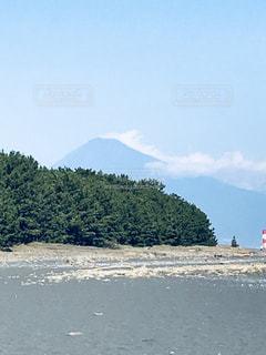 三保の松原と富士山の写真・画像素材[945920]