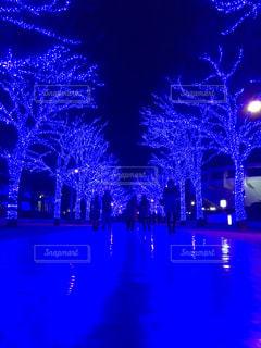 渋谷の写真・画像素材[628149]