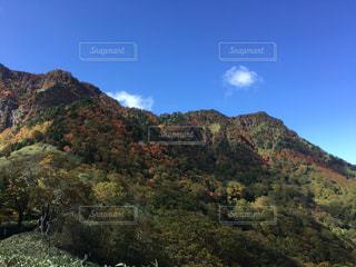 背景の山と木の写真・画像素材[804123]