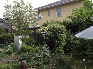 建物の前に茂みに家の写真・画像素材[1044563]
