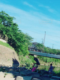 河原の写真・画像素材[626571]