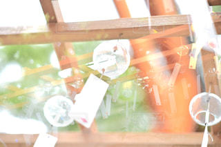 ガラスの陳列ケースの写真・画像素材[1136205]