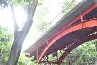川に橋を渡る列車の写真・画像素材[1143549]