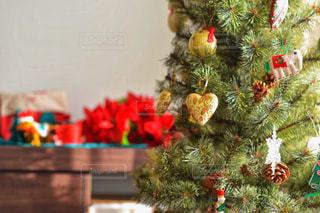 部屋のクリスマス ツリーの写真・画像素材[1659304]