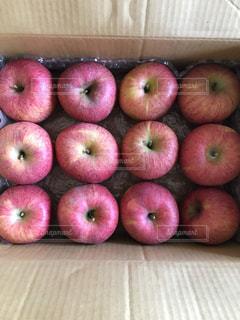 果物の写真・画像素材[626561]