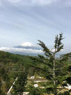 富士山の写真・画像素材[626616]