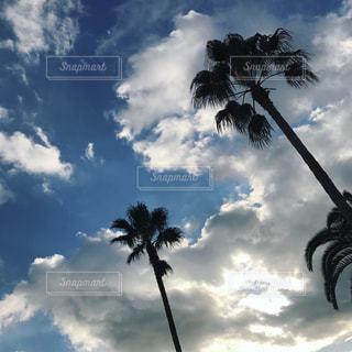 空の写真・画像素材[626583]