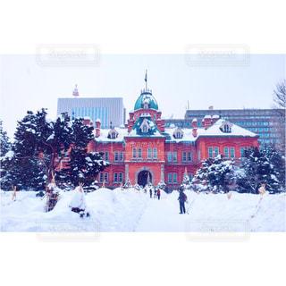冬の写真・画像素材[629615]