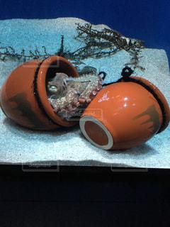 たこと壺の写真・画像素材[2360263]
