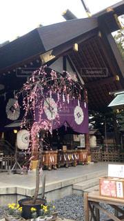 東京大神宮の写真・画像素材[627464]