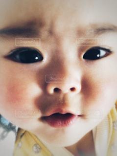 赤ちゃん - No.1017586