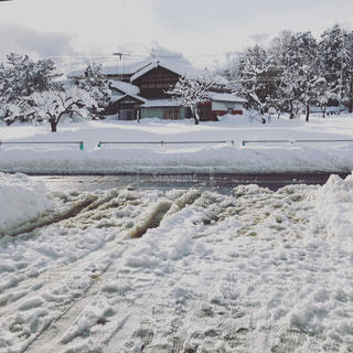 雪に覆われたフィールドの写真・画像素材[1057346]