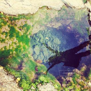 海の写真・画像素材[638132]