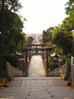 福岡県の宮地嶽神社から見える光の道の写真・画像素材[1844025]