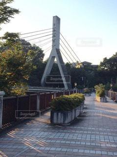 橋の写真・画像素材[638186]