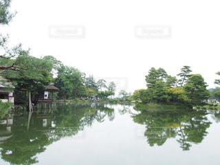 木々 に囲まれた水の体の写真・画像素材[1267631]