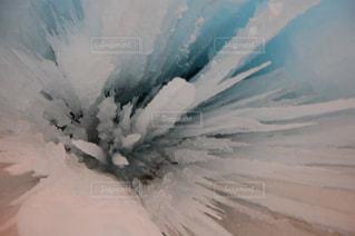 冬の写真・画像素材[642181]