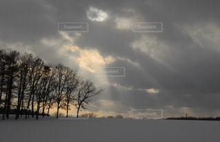 自然の写真・画像素材[642185]