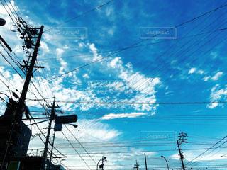 都市上空を飛ぶカモメの群れの写真・画像素材[734452]