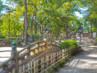 中村公園入り口の写真・画像素材[789293]
