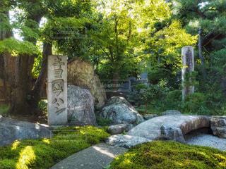 キヨマサハシの写真・画像素材[789347]