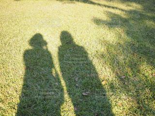 芝生と影の写真・画像素材[851359]