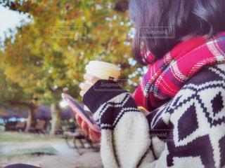 秋の公園の写真・画像素材[873322]