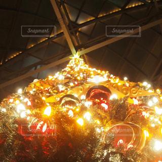 クリスマスツリーの写真・画像素材[874323]