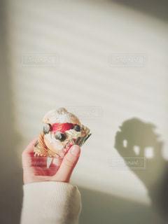 手作りシュークリームの写真・画像素材[964975]