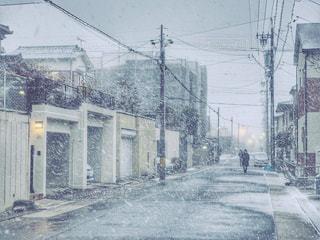 降り始めた雪の写真・画像素材[975868]