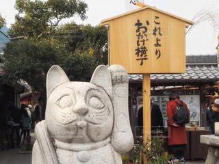 招き猫の写真・画像素材[985110]