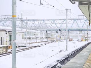 雪の日の写真・画像素材[998087]