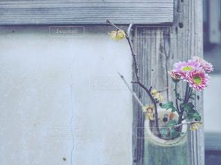生け花の写真・画像素材[1001695]