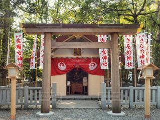佐瑠女神社の写真・画像素材[1009008]