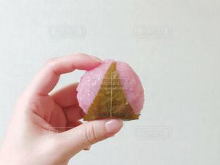 桜餅の写真・画像素材[1016568]