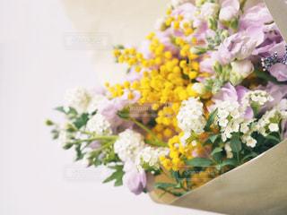 ミモザ、小手鞠、ストックの花束の写真・画像素材[1060329]