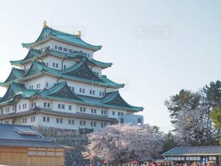 名古屋城と桜の写真・画像素材[1094603]