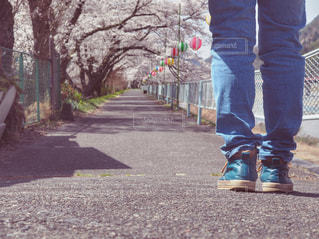 桜の美しさに足を止める人の写真・画像素材[1100895]