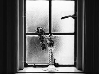 窓辺の花瓶と花の写真・画像素材[1113348]