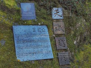 浄蓮の滝と天城越え - No.1129356