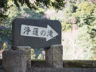 浄蓮の滝の案内の写真・画像素材[1129359]