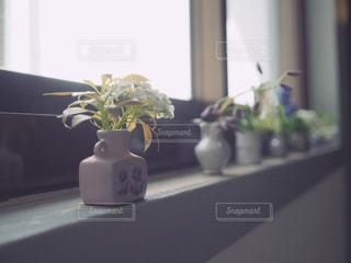 窓辺の花瓶の写真・画像素材[1152309]