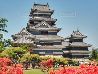国宝松本城の写真・画像素材[1152344]