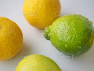 テーブルの上のオレンジのグループの写真・画像素材[1159965]