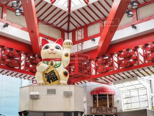 大須商店街の招き猫の写真・画像素材[1162470]