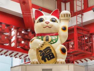 大須商店街の招き猫の写真・画像素材[1162471]